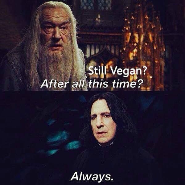 harry potter vegan meme