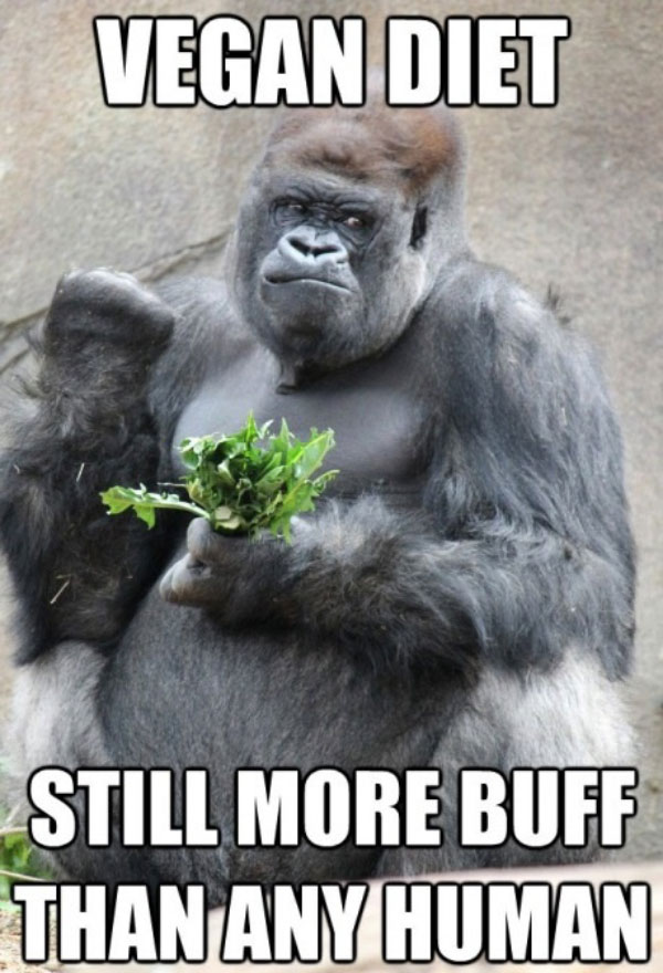 gorilla vegan