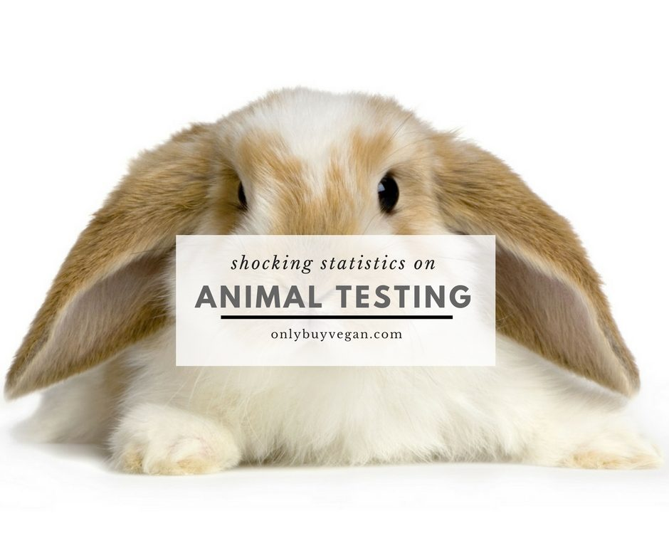 a look at the various alternatives to animal testing Animal rights group accuses va of using dogs in questionable experiments by:  and reduce expenses when viable alternatives to animal-based testing exist  systems and the efficacy of .