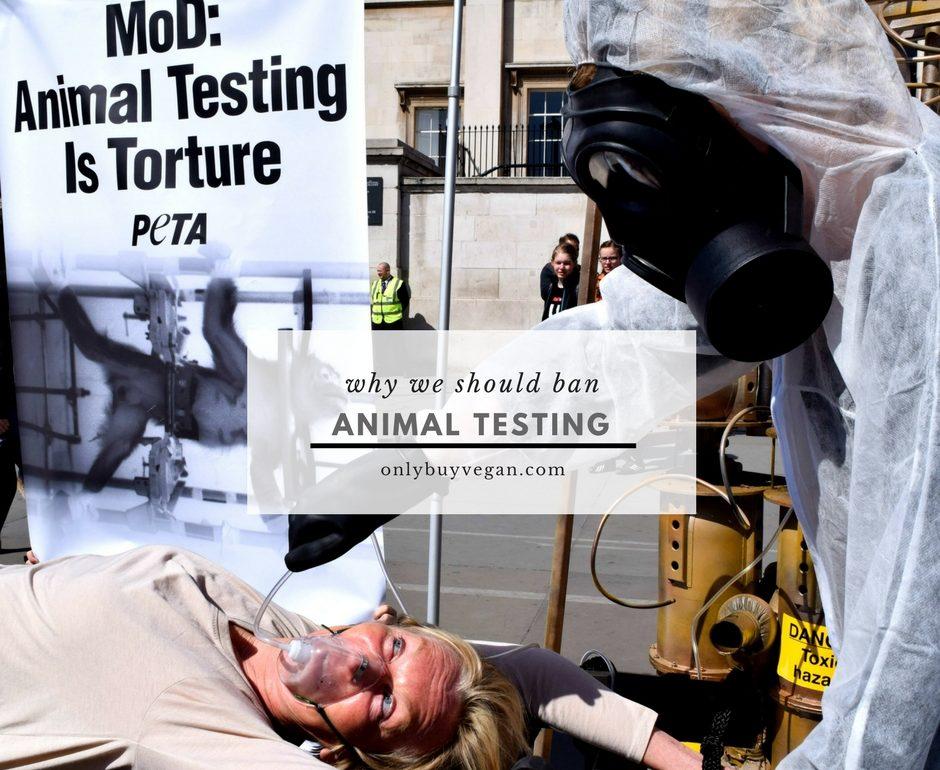Top Five Reasons to Stop Animal Testing