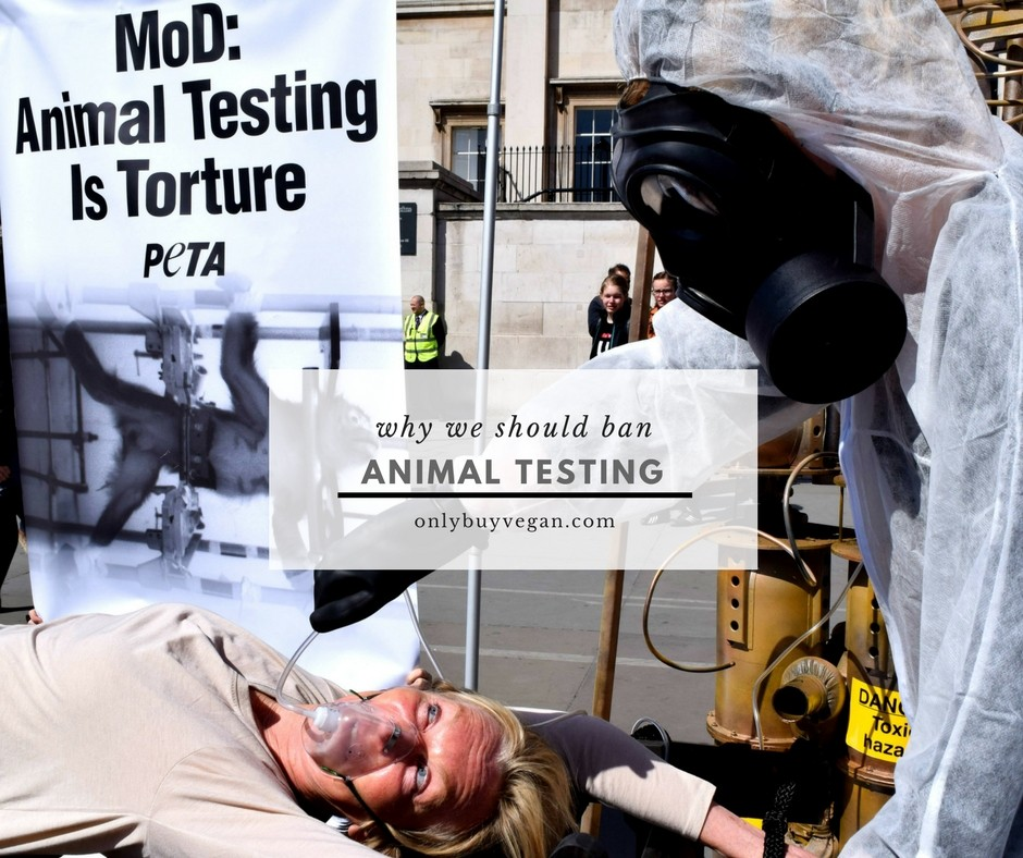Why Animal Testing Should Be Banned Worldwide