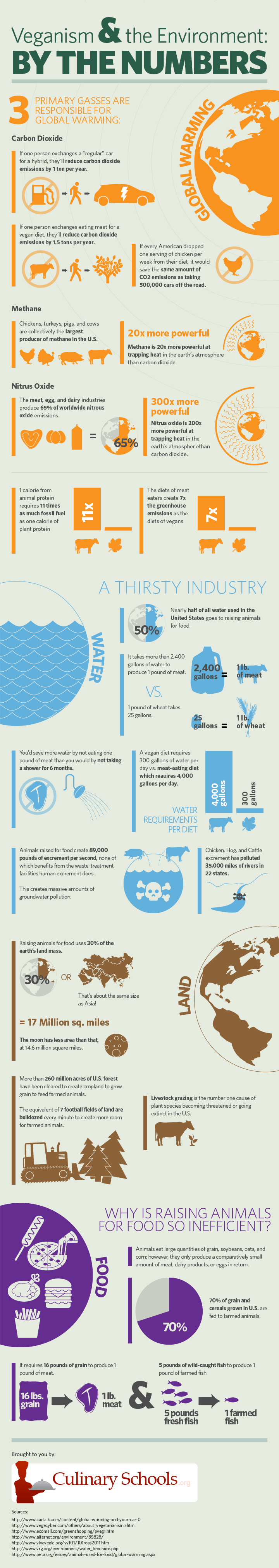 vegan infographic environment