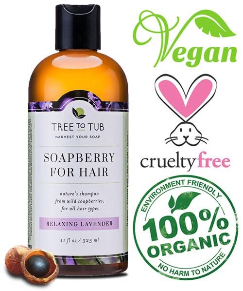 soapberry dandruff shampoo
