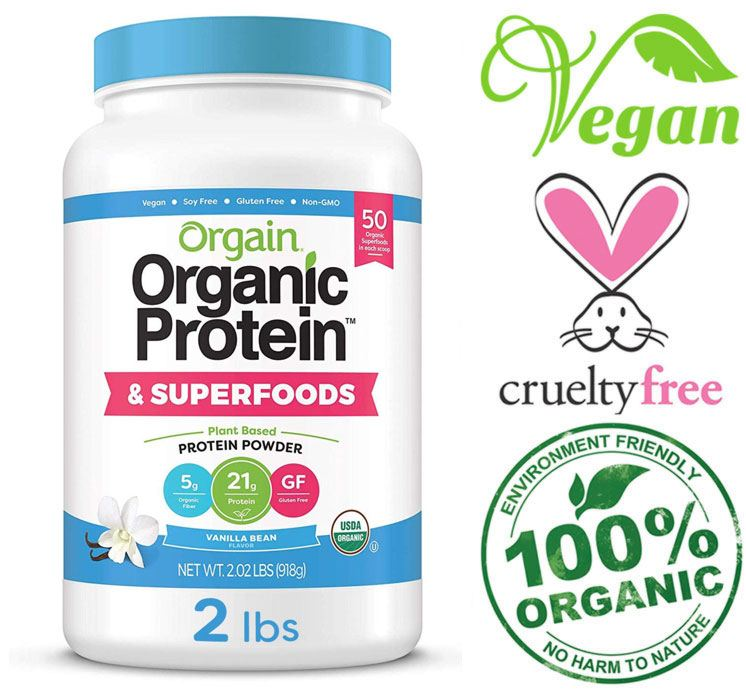orgain plant based protein